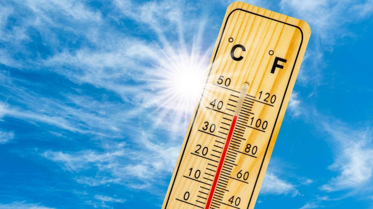 7 rules of nutrition to stay energetic in hot weather
